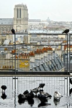 Centre Pompidou 3, 2012